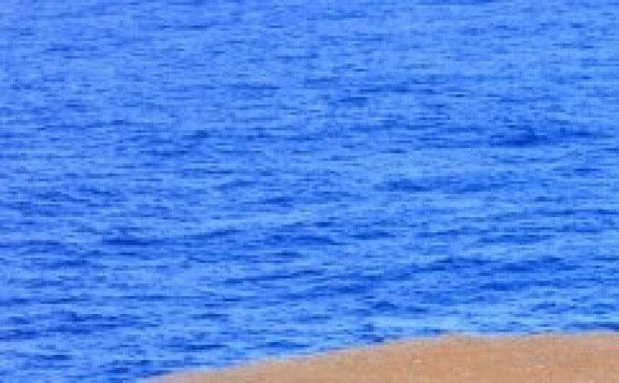 Sargasso Denizi'nin diğer denizlerden farklılaştırarak tek olmasını sağlayan özelliği nedir? Kim Milyoner yanıtı