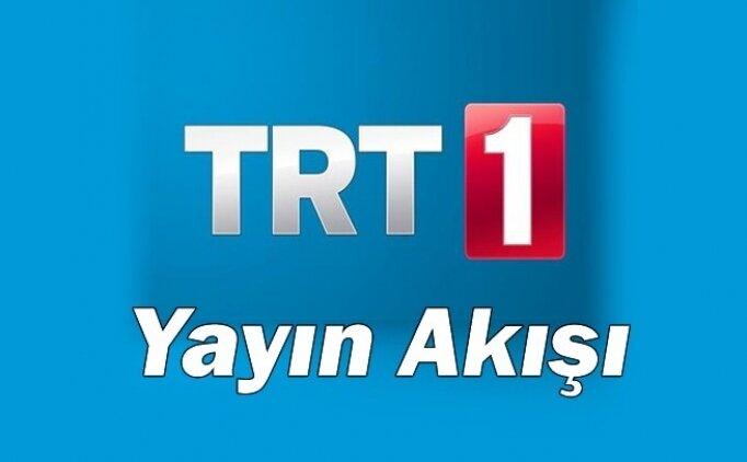 TRT 1 uydu frekans bilgileri, TRT 1 nasıl izlenir? TRT 1 yayın akışı