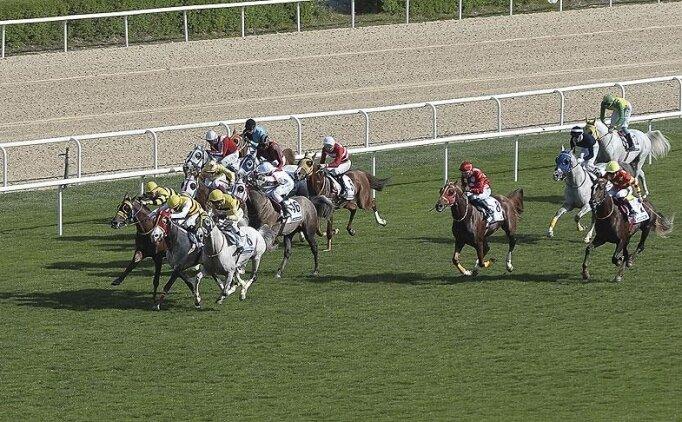 At yarışlarında TBMM Kupası Koşusu 4 Temmuz'da yapılacak