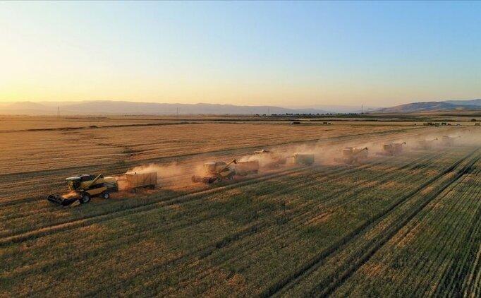 Pandemi sonrası ülkeler buğday stoklama yarışına girdi