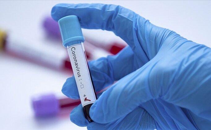 Corona virüs gün gün belirtileri neler, nasıl korunulur? Coronavirüs ilk belirtileri nedir, nasıl bulaşır?