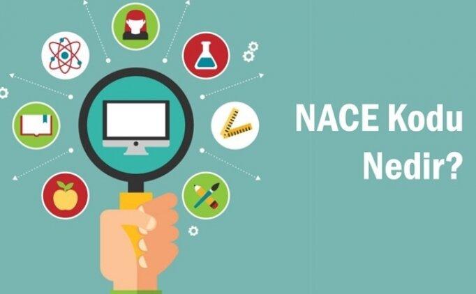 NACE kodu işyeri muafiyet sorgulama çalışma izni alma