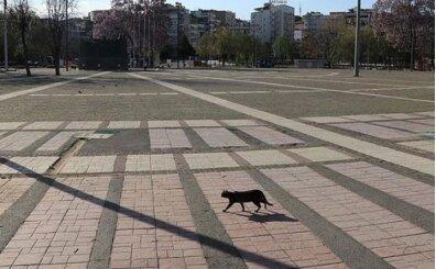 Hafta sonu sokağa çıkma yasağı açıklaması