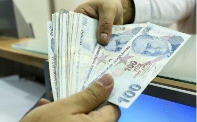 Ziraat Bireysel Temel İhtiyaç Destek Kredisi Başvurusu Sorgulama sayfası